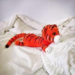 тигр1.jpg